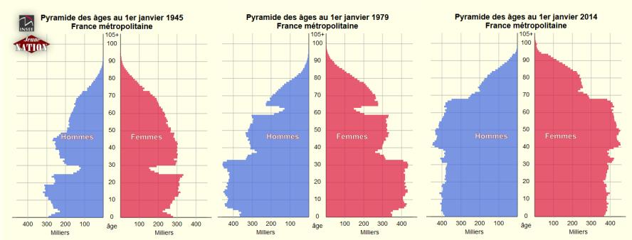 pyramide-age-1945-2014-france-2