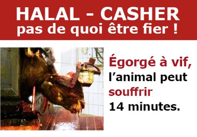 halal-casher_pas_de_quoi_etre_fier-fondation_brigitte_bardot