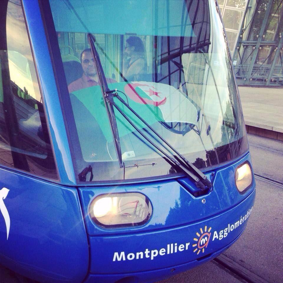 racaille_algerienne_montpellier_drapeau_transports_publics
