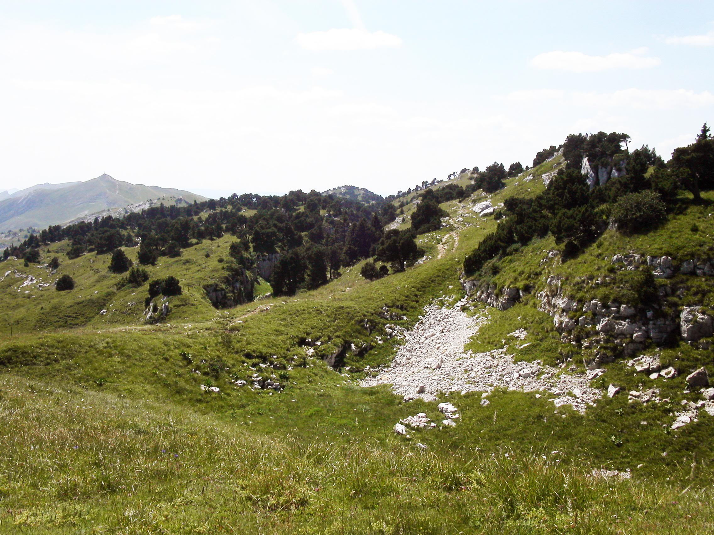 Crêtde-de-La-Neige-parc_naturel_haut_jura
