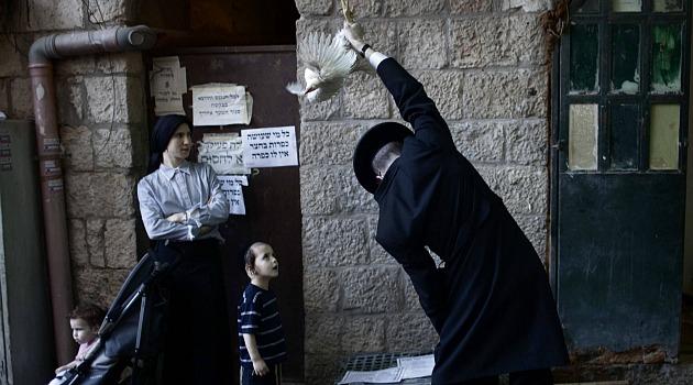 """Un rituel méconnu : à """"kapparot"""", les Juifs torturent les animaux plus que d'habitude. Les bêtes sont tournoyées dans les airs avant d'être égorgées."""