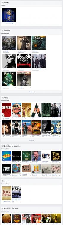 Copie d'écran du compte Facebook d'Anton Lundin-Pettersson montrant clairement l'absence de tout lien avec les nationalistes