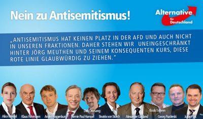 Allemagne_AfD_antisémitisme_scission
