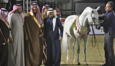arabiee-saoudite_ue_milliardaire_haras