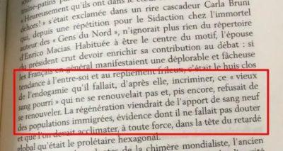 laveu-du-racisme-biologique-de-carla-bruni-contre-le-vieux-sang-pourri-des-francais-2